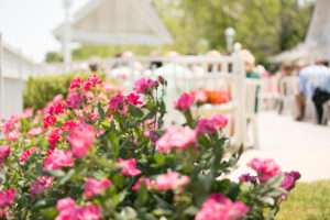 Kurtz's-Beach-Waterfront-Weddings-Outdoor-Living-Radiant-Photography-Maryland-Photos-Connie-Duane-288